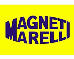Magneti Marelli 000041125010 - CONMUT.COMPLETO IVECO DAILY TODOS