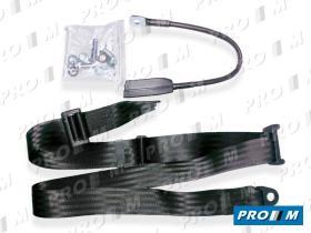 Accesorios 300/45 - Cinturón de seguridad estático 3 puntos 30cm rojo