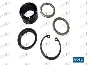 Caucho Metal 12044 - Juego reparación cremallera de dirección Renault 4 5 6