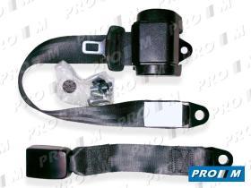 Accesorios 254 - Cinturón automático 2 puntos de anclaje (homologado)