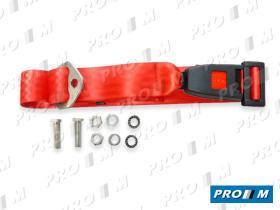 Accesorios 210RED - Cinturón trasero 2 puntos de anclaje (homologado)
