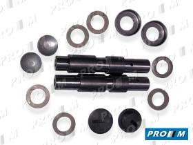Caucho Metal 11550 - Juego reparacion de mangueta Citroen